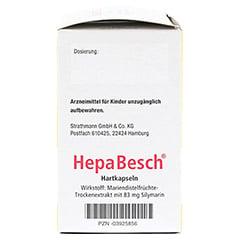HepaBesch Hartkapseln 100 St�ck N3 - Rechte Seite