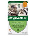 ADVANTAGE 40 mg L�sung kleine Katzen/Zierkaninchen 4x0.4 Milliliter