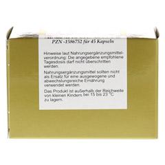 L-CARNITIN 1x500 mg Kapseln 45 Stück - Rückseite