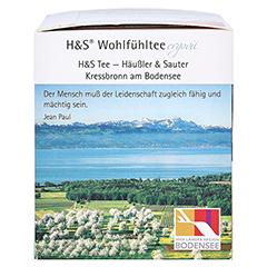 H&S Mate-Minze Filterbeutel 20 Stück - Rechte Seite