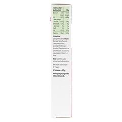 TAXOFIT Energie B12-sofort Schmelztabletten 30 Stück - Linke Seite