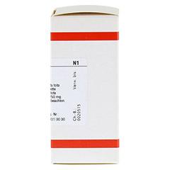 CALADIUM seguinum D 12 Tabletten 80 Stück N1 - Rechte Seite