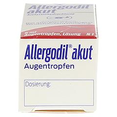 Allergodil akut 6 Milliliter N1 - Unterseite