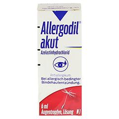 Allergodil akut 6 Milliliter N1 - Vorderseite