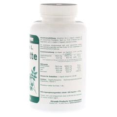 HAGEBUTTE 750 mg Rosa canina L.Kapseln 200 Stück - Rechte Seite