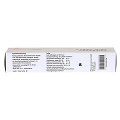 CHELIDONIUM PHCP Salbe C 100 Gramm N2 - Oberseite