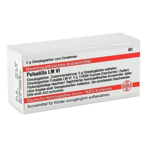LM PULSATILLA VI Globuli 5 Gramm N1