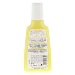 RAUSCH Ei Öl Nähr Shampoo 200 Milliliter - Rückseite
