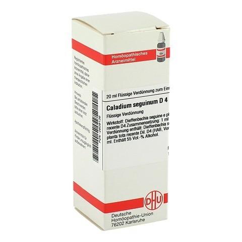 CALADIUM seguinum D 4 Dilution 20 Milliliter N1