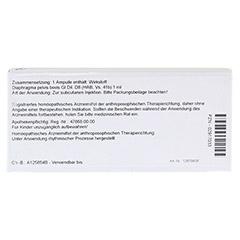 DIAPHRAGMA PELVIS GL D 8 Ampullen 10x1 Milliliter N1 - R�ckseite