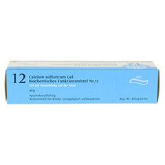 BIOCHEMIE DHU 12 Calcium sulfuricum D 4 Gel 50 Gramm N1 - Oberseite