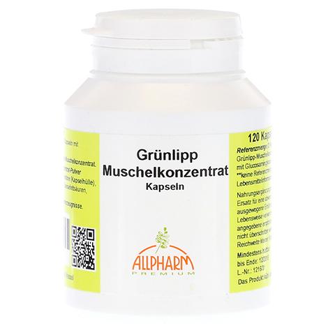 GR�NLIPPMUSCHEL Konzentrat 500 mg Kapseln 120 St�ck