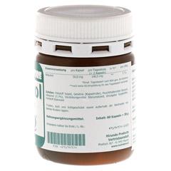 UBIQUINOL 50 mg Kapseln 60 Stück - Rechte Seite