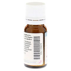 RUTA GRAVEOLENS C 30 Globuli 10 Gramm N1 - Rückseite
