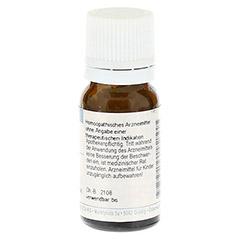 RHUS TOXICODENDRON C 200 Globuli 10 Gramm - Rückseite