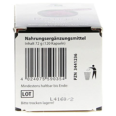 ROTKLEE KAPSELN 500 mg 120 Stück - Unterseite