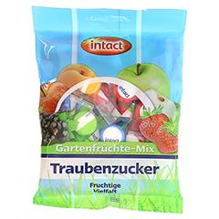 INTACT Traubenz. Gartenfrüchte-Mix 75 Gramm