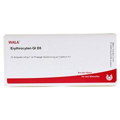 ERYTHROCYTEN GL D 5 Ampullen 10x1 Milliliter N1 - Vorderseite